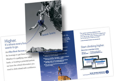 BlueBook Services Brochure